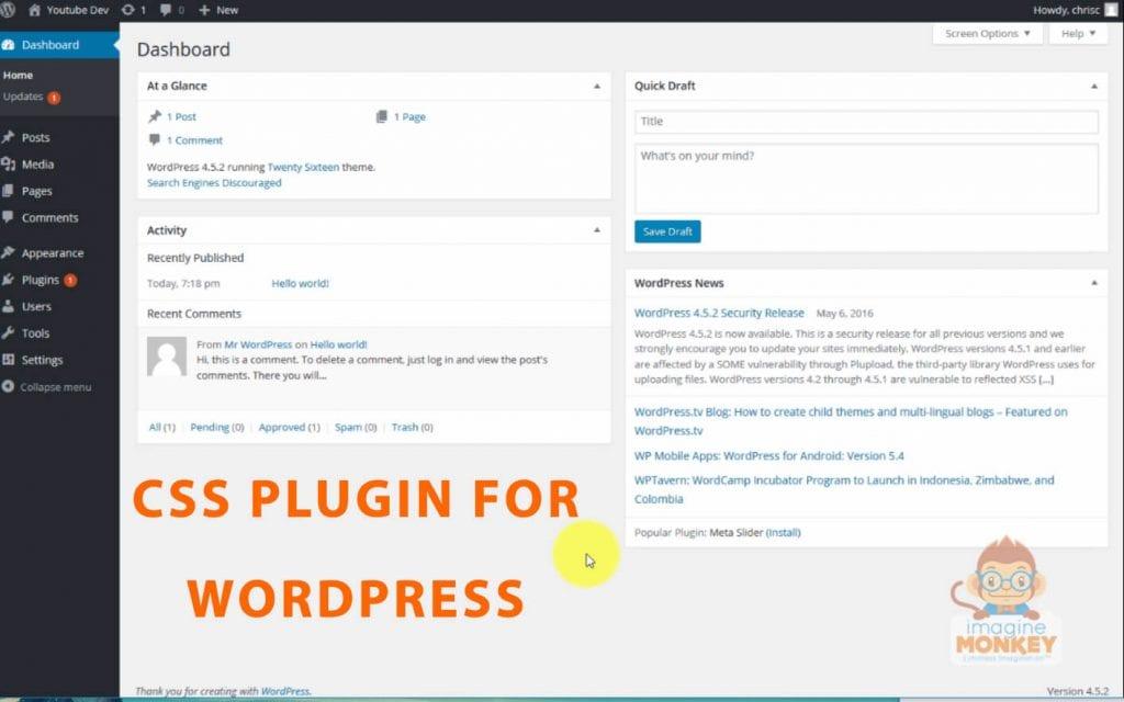 custom css plugin for wordpress